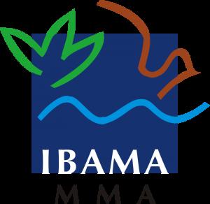 IMABA MMA